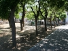 photo4_mitilini_park