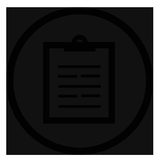 icon auditing